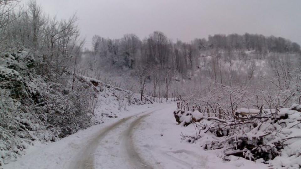 Gümüşhane'de 50 Köy Yolu Ulaşıma Kapalı