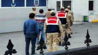 Şiran'daki hırsızlar Jandarma'dan kaçamadı